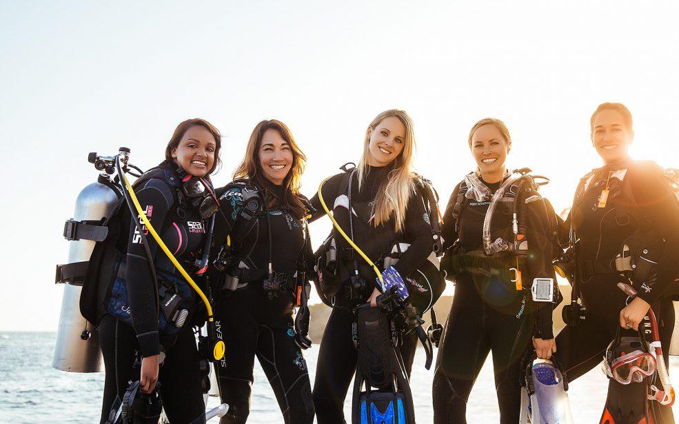 Ladies Dive - Coming Soon in UAE, comingsoon.ae