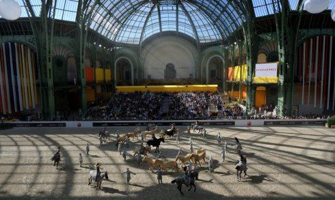 Bartabas Equestrian Show in Al Ain - Coming Soon in UAE, comingsoon.ae