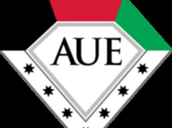 American University in the Emirates (AUE)