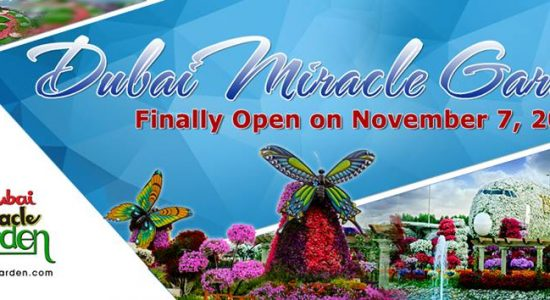 Dubai Miracle Garden 2017 – 2018 - comingsoon.ae