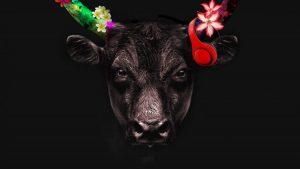 Toro Toro Friday Brunch