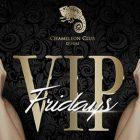 VIP FRIDAY at Chameleon Club, Dubai