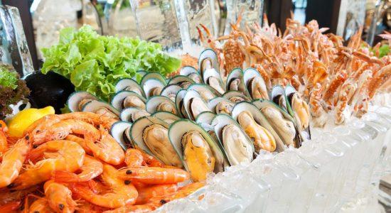 Seafood Expo Dubai - comingsoon.ae