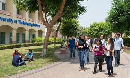 Summer Internship Fair At UOWD - Coming Soon in UAE, comingsoon.ae