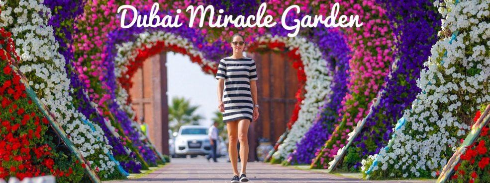 Dubai Miracle Garden 2018 – 2019 - Coming Soon in UAE, comingsoon.ae