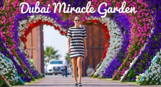 Dubai Miracle Garden 2018 – 2019 - comingsoon.ae