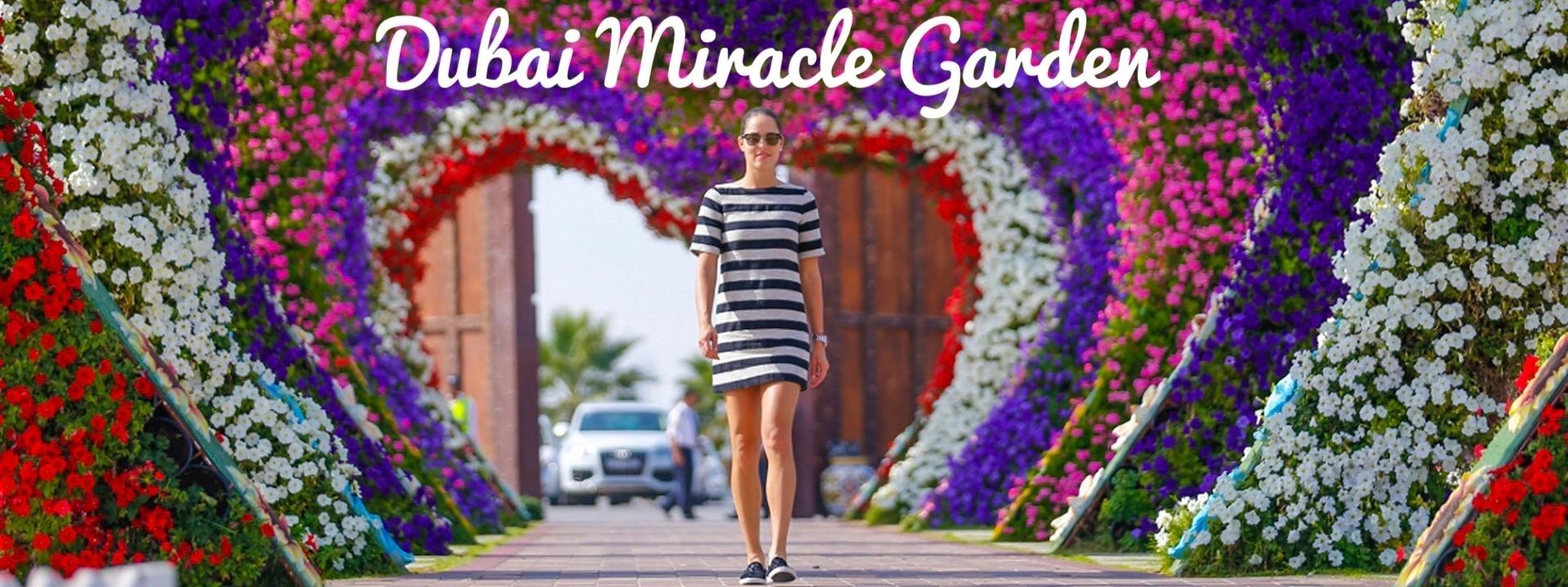 Dubai Miracle Garden 2018 – 2019 - Coming Soon in UAE