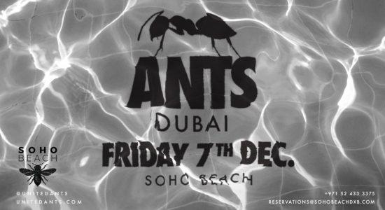 ANTS on Tour – SOHO Beach - comingsoon.ae