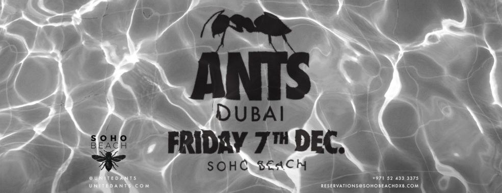 ANTS on Tour – SOHO Beach - Coming Soon in UAE, comingsoon.ae