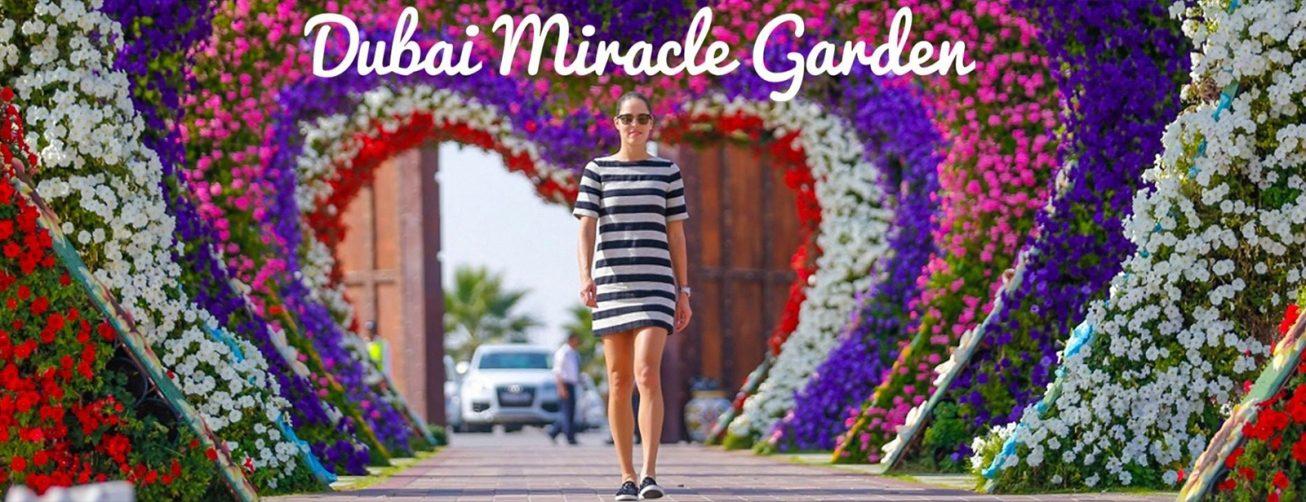 Dubai Miracle Garden 2019 – 2020 - Coming Soon in UAE