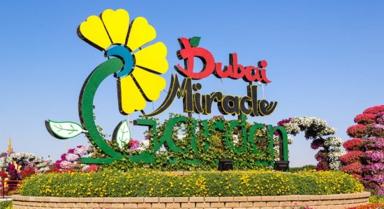 Dubai Miracle Garden – Flower Kingdom From A Fairy Tale - comingsoon.ae