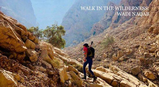 Walk in the Wilderness: Wadi Naqab at RAK - comingsoon.ae