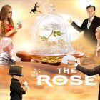 """""""The Rose"""" play at the Theatre by QE2 by Theatre by QE2"""